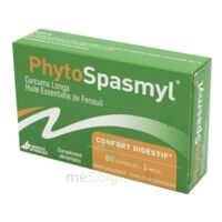 Phytospasmyl Caps B/60 à TOUCY
