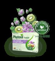 Phytoxil Transit Comprimés B/20 à TOUCY