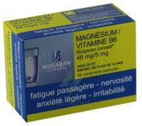 Magnesium/vitamine B6 Biogaran Conseil 48 Mg/5 Mg, Comprimé Pelliculé à TOUCY