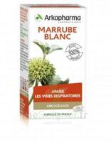 Arkogélules Marrube Blanc Gélules Fl/45 à TOUCY