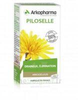 Arkogélules Piloselle Gélules Fl/45 à TOUCY