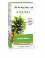 Arkogélules Ananas Gélules Fl/45 à TOUCY