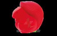 Palette De Maquillage Pupa Squirrel 3 Variante 013 à TOUCY