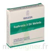 Euphrasia 3dh Weleda, Collyre En Solution En Récipient Unidose à TOUCY