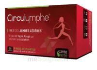 Santé Verte Circulymphe Triple Actions B/60 à TOUCY