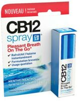 Cb 12 Spray Haleine Fraîche 15ml à TOUCY