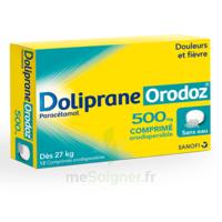Dolipraneorodoz 500 Mg, Comprimé Orodispersible à TOUCY
