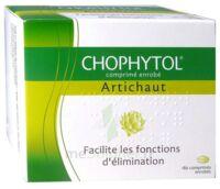 Chophytol Cpr Enr 6plaq/30 à TOUCY