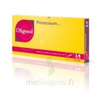 Oligosol Potassium Solution Buvable En Ampoule 14amp/2ml à TOUCY