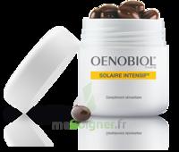 Oenobiol Solaire Intensif Caps Peau Normale Pot/30 à TOUCY