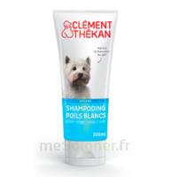 Clément Thékan Shampooing Poils Blancs T/200ml à TOUCY