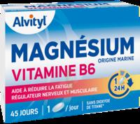 Govital Magnésium Vitamine B6 Comprimés B/45 à TOUCY