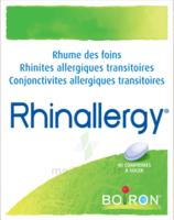 Boiron Rhinallergy Comprimés B/40 à TOUCY