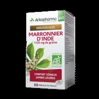 Arkogélules Marronnier D'inde Bio Gélules Fl/45 à TOUCY