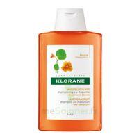 Klorane Capucine Shampooing 200ml à TOUCY